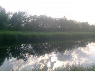Река. Остров Сахалин