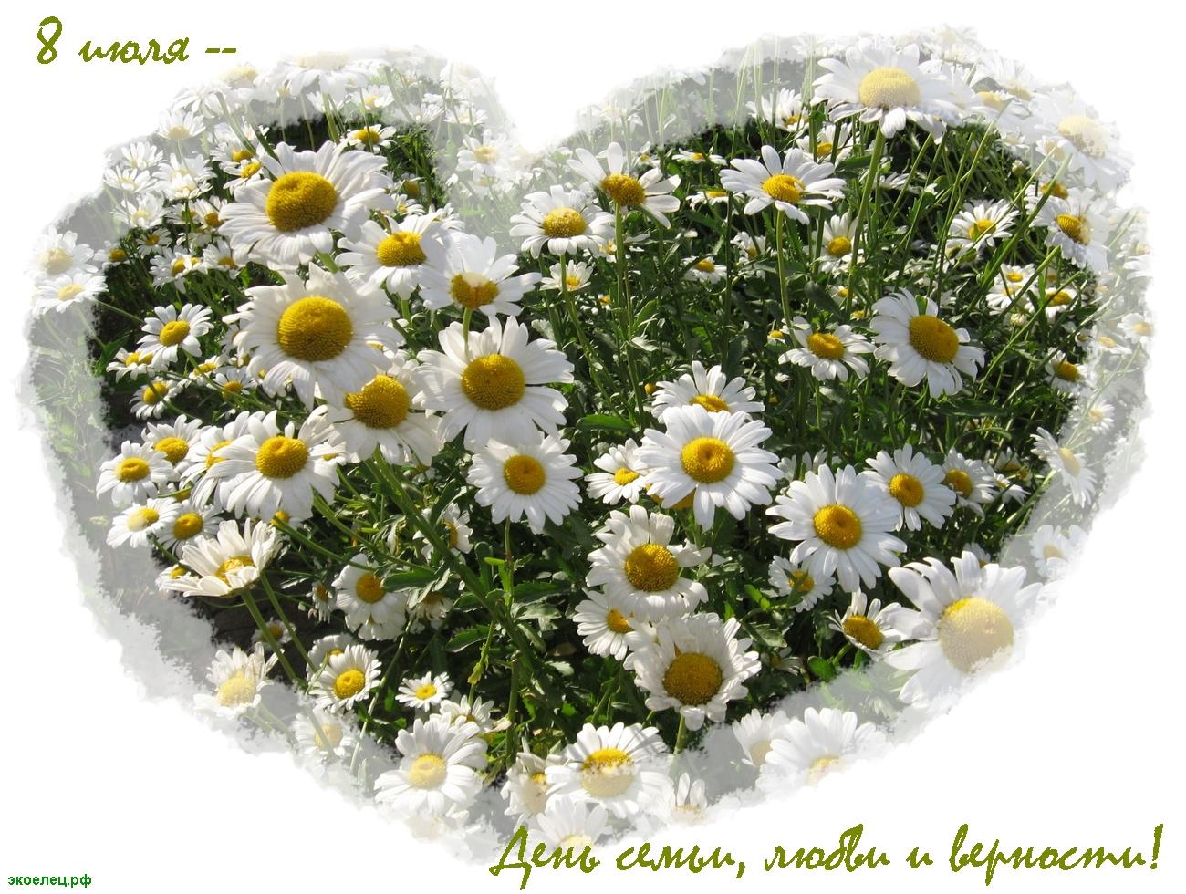 С Днем любви поздравительные открытки. Картинки С Днем любви