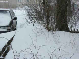 ee-anomalnyj-snegopad-03-2013-6