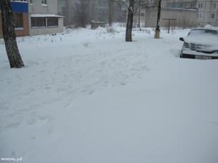 ee-anomalnyj-snegopad-03-2013-7