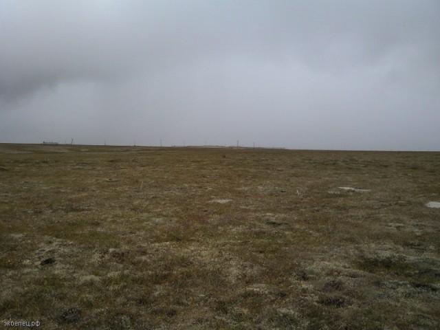 ee-tundra-yamburg-36