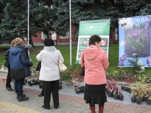 ee-antonovskie-yabloki-2013-23