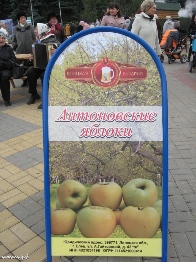ee-antonovskie-yabloki-2013-28