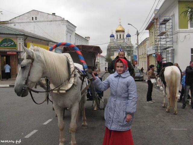 ee-antonovskie-yabloki-2013-66