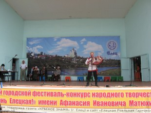 ee-den-goroda-2014-27
