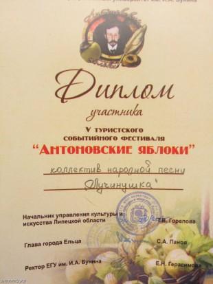 ee-antonovskie-yabloki-2014-47